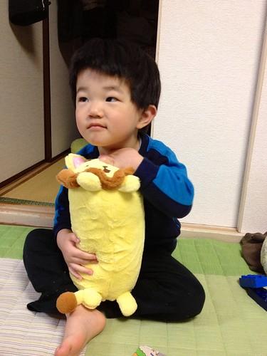 ライオンまくら 2013/4/15