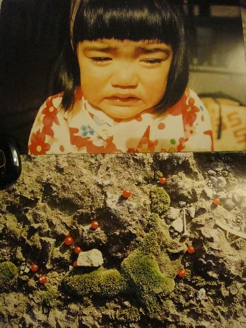 18 青苔地上的小红果是你掉落的泪珠