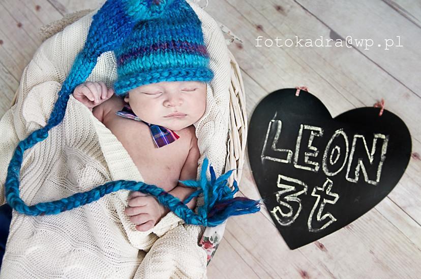 fotografie noworodków  w grudziądzu -Leo