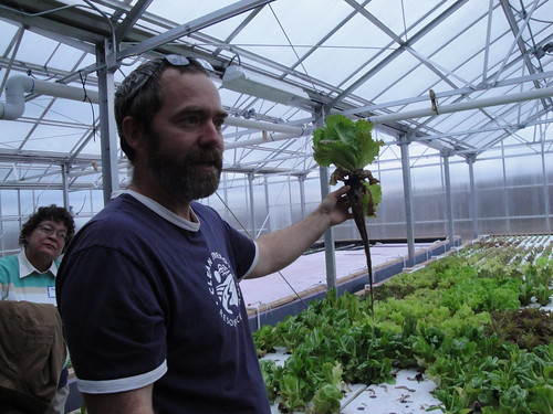 Victus Farm greenhouse