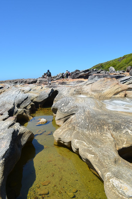 Depending on tides, sections of the walk can be taken along the rocky shoreline