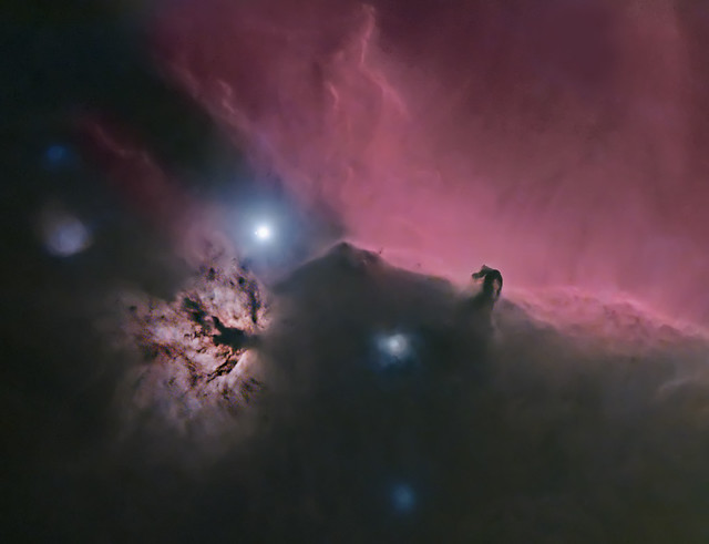 Starless Horsey