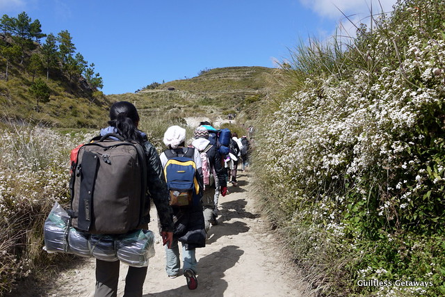 mt-pulag-trek.jpg