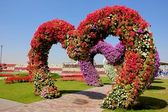 At the Miracle Garden