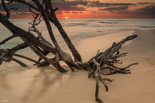ocean longexposure sunset orange sun seascape tree beach nature water colors clouds island twilight sand nikon puertorico wideangle playa tropical caborojo singhray seacscape nikond600 nikon28f18g playabuyé