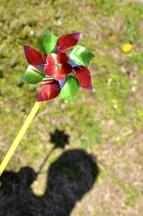 Pinwheel and shadow, by Elizabeth Ruffing