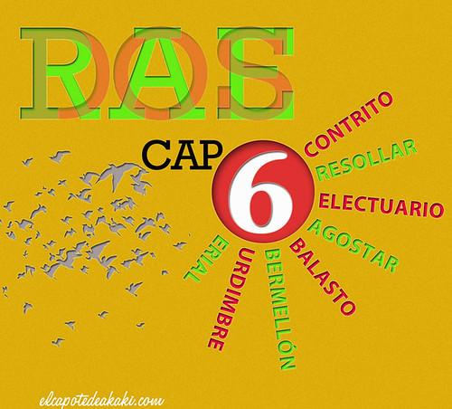 RAEDOS_CAP6
