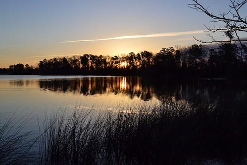 nature sunrise virginia pond colonialparkway
