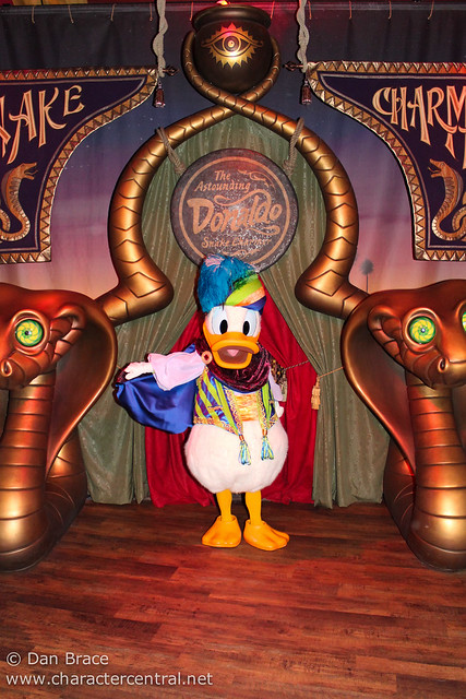 Meeting the Astounding Donaldo