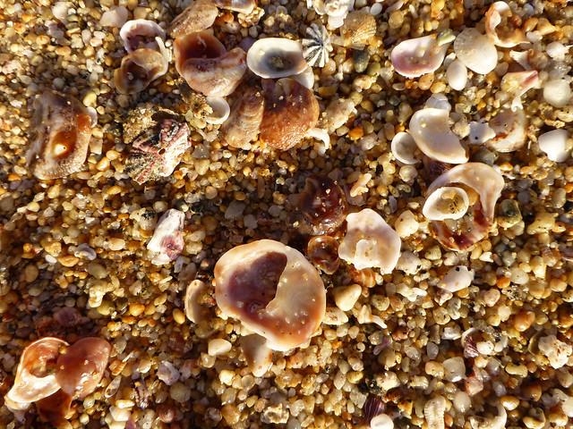 sand at playa escondida