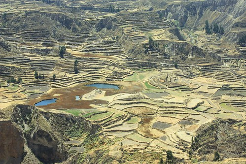 peru geotagged chivay valledelcolca geo:tool=yuancc geo:lat=15616527 geo:lon=71848783