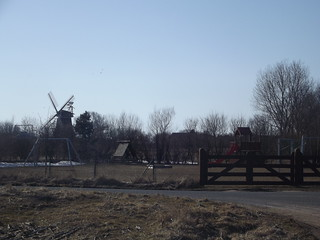 Looking towards the windmill
