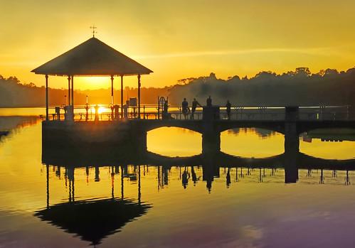 Singapore Pierce Reservoir, my favorite rendezvous for a sunset shot...