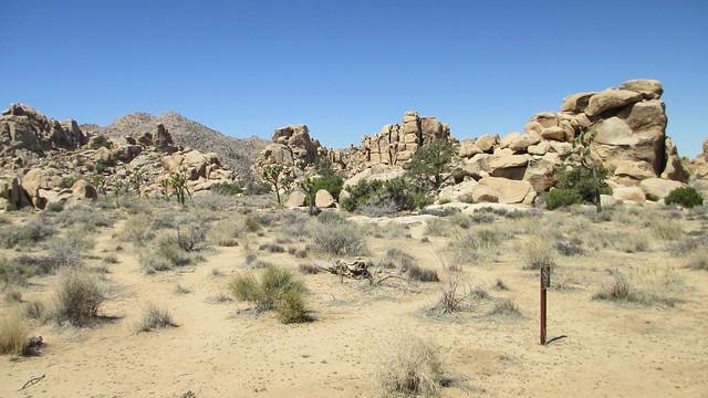 271 Mi - Distance from San Bernardino to Sequoia National Park