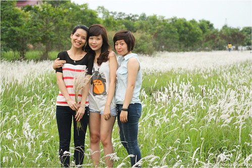 Chụp ảnh trên cánh đồng hoa lau ở KĐT Việt Hưng
