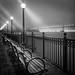 Silently Observing, Pier 7, San Francisco by Sebastian (sibbiblue)