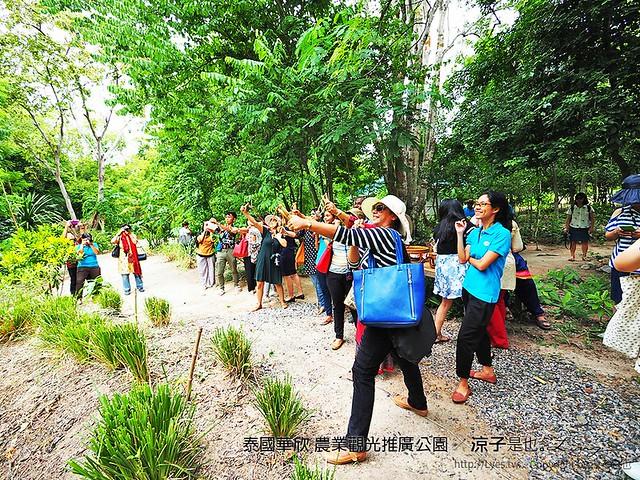 泰國華欣 農業觀光推廣公園 33