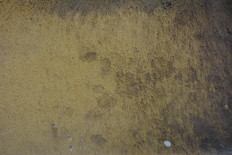 wall-texture-by-texturepalace-medium-12