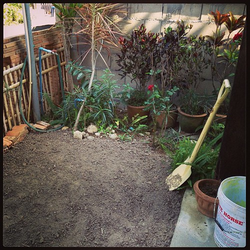 Finally! I have soil in my garden and I can plant things. I'm such a blissed out girl right now.