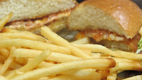 Golden fried fish sandwich and fries by Coyoty