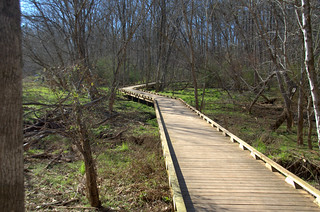 Lake Connestee Nature Park Boardwalk