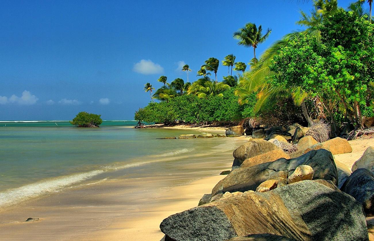 Beach Desktop Florida