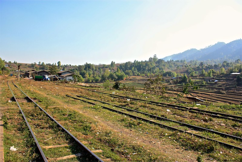 rice paddies beyond the tracks