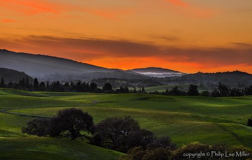 california sunset nature grass landscape rollinghills blends d600 windingroads arastraderopreserve californiaoaktrees galleryoffantasticshots bestevercompetitiongroup