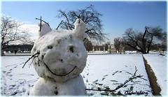 PARIS - SNOW