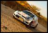 WRC 2013- Sebastien ogier