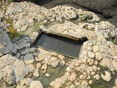 被禁錮礫石與水池。