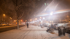 Late March Snowfall-4.jpg