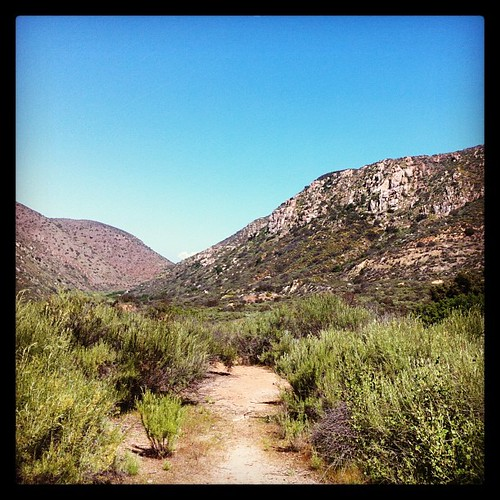 Mission Trails today. #latergram