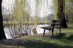 Banc face à la rivière