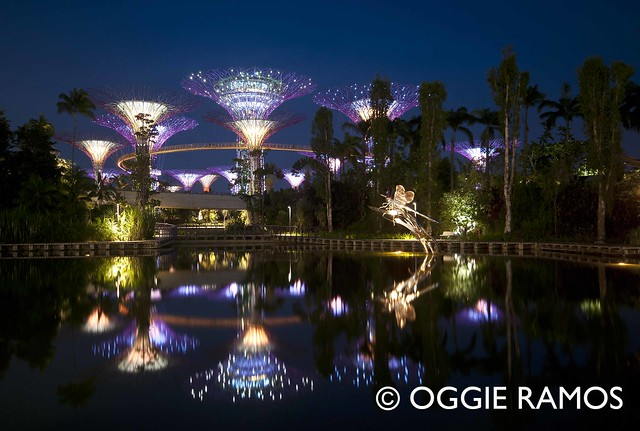 Singapore Gardens By the Bay Reflections