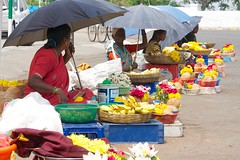 Flower sellers at Chamundeswari temple