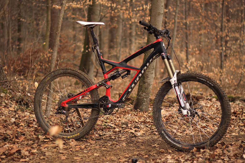 S-Works Enduro Custom_01