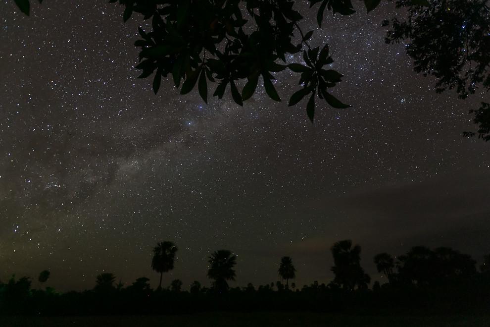 Los cielos nocturnos del interior del país no dejan de sorprender por la gran cantidad de estrellas que pueden ser vistas debido a la oscuridad del campo y a la ausencia de luz parásita de ciudades cercanas. En esta fotografía se muestra una noche estrellada en el Chaco paraguayo, cerca de Bahía Negra. (Tetsu Espósito)