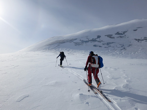 Plane access ski touring with Wild Alpine Guides in Wrangell St Elais National Park Alaska