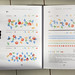 United Nations Working Paper data visualization by graphic systems