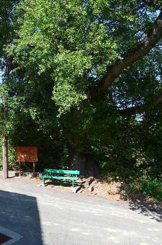 Der Wegweiser zum Myllomeris Wasserfall zu erkennen an der grünen Bank