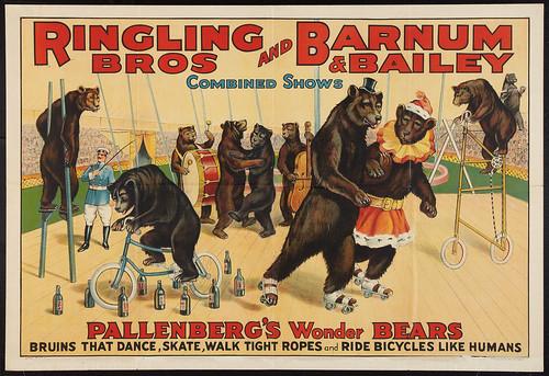 RinglingBarnum1920s_Bears