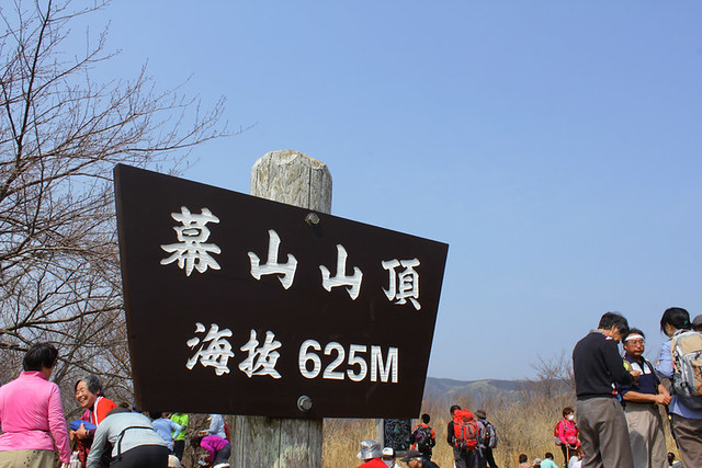 幕山_29