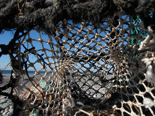 net beach canon fishing powershot shore lobster g11 lobsterpot machars monreith