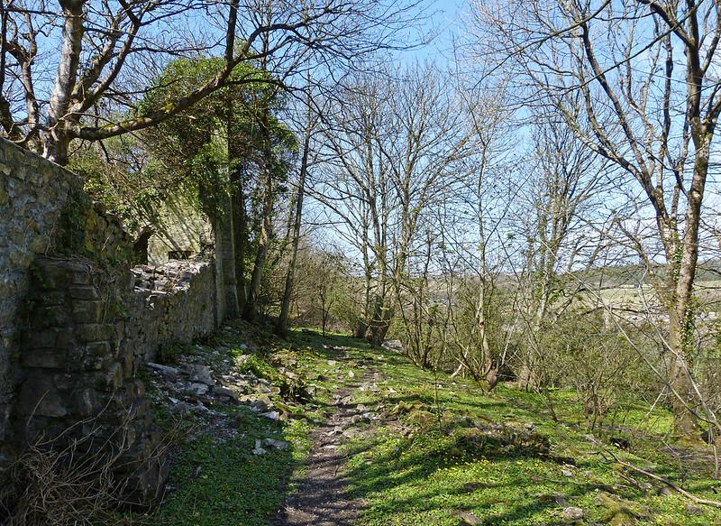 P1040723 - Dunraven Gardens