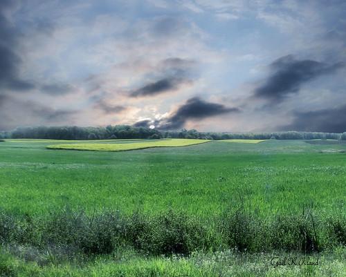 sky sun green field photoshop georgia landscape photography photo excellent lush scenicsnotjustlandscapes gailpiland rememberthatmomentlevel1 me2youphotographylevel1