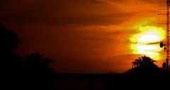 Ocasos de Torreón/Torreón sunsets