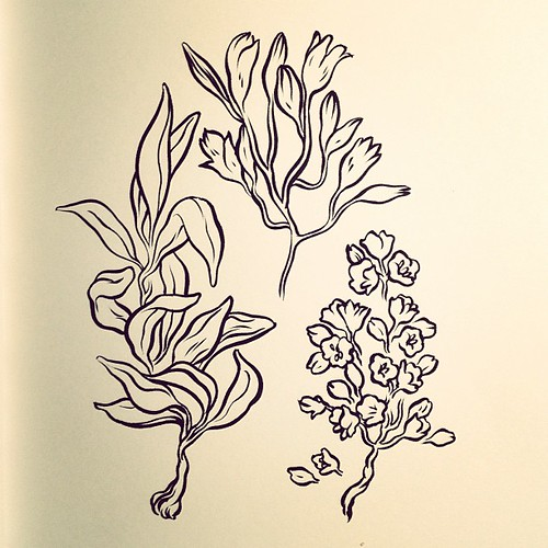 Ink #drawing of foliage. #art #sketch of the night.