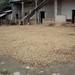 Drying coffee beans - secando el café; San Juan Juquila Mixes, Región Mixes, Oaxaca, Mexico por Lon&Queta