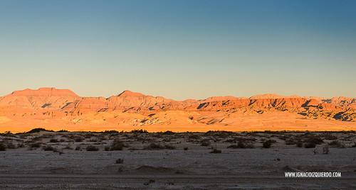 Israel - Negev Desert 01